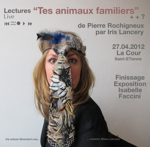 Iris-animaux familiers2
